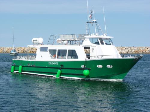 sightseeing boat / diesel / inboard