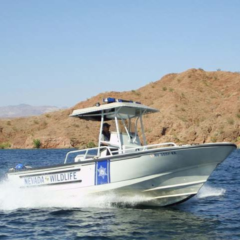 Outboard patrol boat 24' JUSTICE Brunswick Commercial and Government Products
