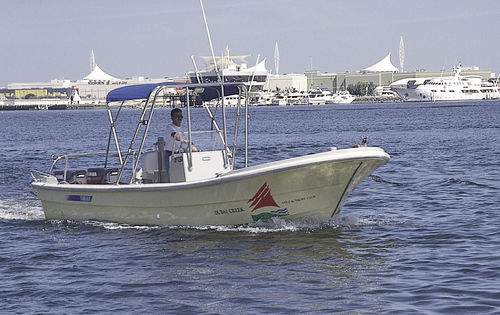 outboard center console boat / twin-engine / open / with T-top