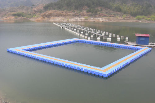 modular floating dock for aquaculture ZY-P00 Zhongya Marine