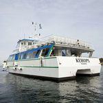 passenger boat / catamaran / inboard / aluminum