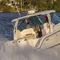 Outboard runabout / twin-engine / bowrider / dual-console DC 295 Pursuit Boats