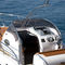 outboard walkaround / twin-engine / 12-person max. / 4-berth