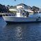 inboard center console boat / diesel / center console / dive