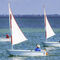 single-handed sailing dinghy / double-handed / instructional / catboatDailQube
