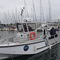 dive support boat / scientific research boat / outboard / aluminum