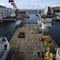 construction vessel offshore support vessel