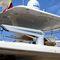 boat davit / hydraulic