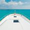 classic motor yacht / downeast / flybridge / with 3 or 4 cabins