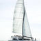 sailing catamaran / charter / flybridge