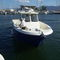 inboard walkaround / twin-engine / wheelhouse / sport-fishing