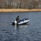 outboard inflatable boat / rigid / 5-person max.