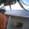 Mooring portable pilot unit / FPSO ShuttlePilot Display  Navicom Dynamics