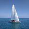 monohull / day-sailer / open transom / carbon