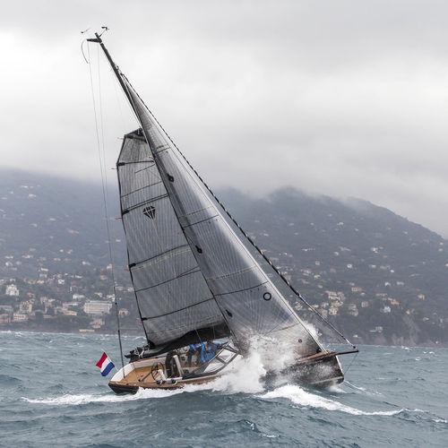 大帆 / クルージングセーリングヨット / トリラジアルカット / 炭素