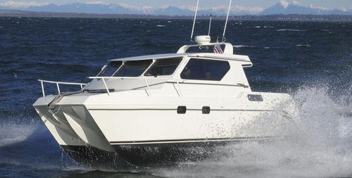 カタマランエクスプレスクルーザー / 船内 / ハードトップ / スポーツ釣り