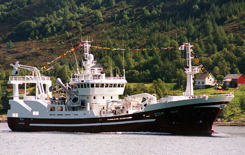 マグロ引網漁船商業用漁船