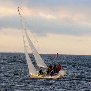 モノハル / スポーツキールボート / オープントランサム / カーボン製