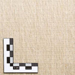 亜麻繊維複合布帛 / 単一方向