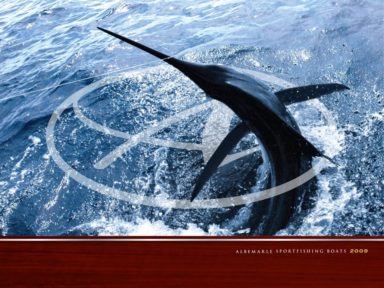 Albemarle Boats 2009 Full Line Product Brochure - Albemarle