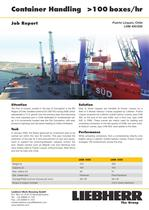 Job Report : Container Handling PDF