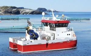 Barcos, navios e equipamentos marítimos