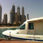barco de passeio / com motor de centro / elétrico a energia solar