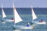 barco de vela ligeira individual / para dois tripulantes / para escola / catboat