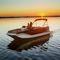 pontoon boat com motor de popa / de wakeboard / máx. 16 pessoas
