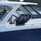 lancha Express Cruiser com motor de popa / bimotor / com hard-top / bowrider