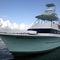 iate a motor de charter / de pesca esportiva / com flybridge / com casco planante