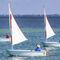 barco de vela ligeira individual / para dois tripulantes / para escola / catboatDailQube