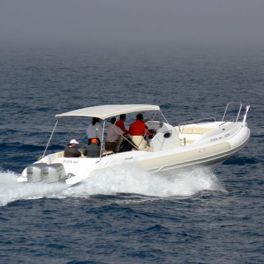 Outboard inflatable boat / twin-engine / rigid / center console Caramel  Mostro