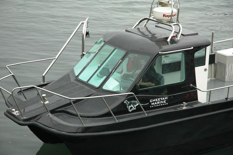 Catamaran cruising fishing boat / outboard / twin-engine