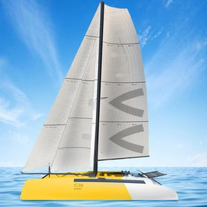 catamaran / racing / open transom / carbon