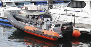 excursion boat professional boat / outboard / rigid hull inflatable boat