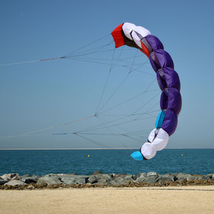 parafoil traction kite