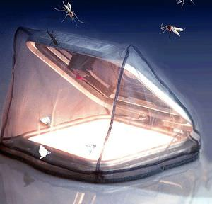 boat insect screen