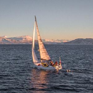 mainsail / headsail / for expedition sailboats / cross-cut