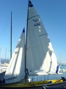 jib / for sailing dinghies / 470