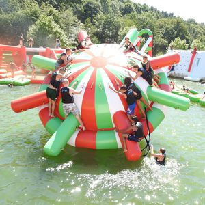 spinner water toy / inflatable / floating