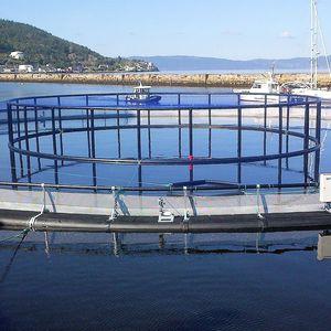 aquaculture fish cage / plastic / HDPE / round