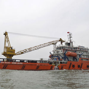 ship crane / for heavy loads / offshore