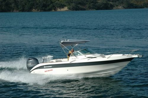 outboard walkaround / dual-console / sport-fishing / 8-person max.