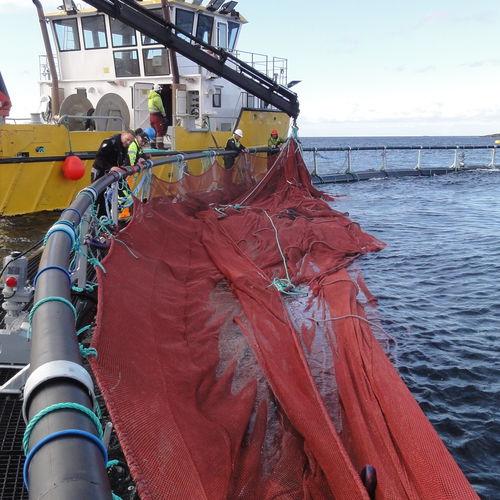 aquaculture net