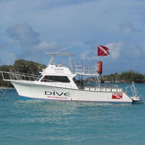 inboard express cruiser / twin-engine / flybridge / dive