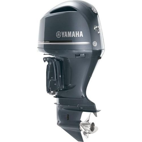 outboard engine / boating / gasoline / 4-stroke
