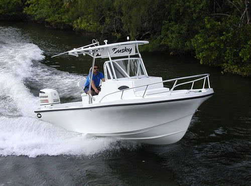outboard walkaround / sport-fishing / with T-top