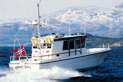 inboard walkaround / wheelhouse / flybridge / sport-fishing