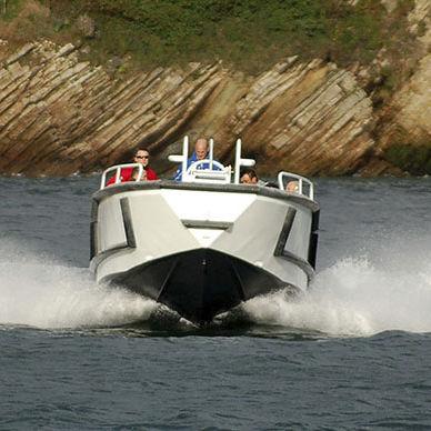 work boat / stern-drive / diesel / aluminum